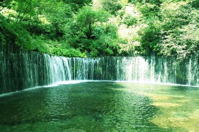 活性水素水を見極める5つのポイント